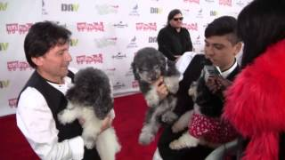 Carlina Rebeiro Miss Westchester Teen Usa 2014 Interviews The Olate Dogs Owners