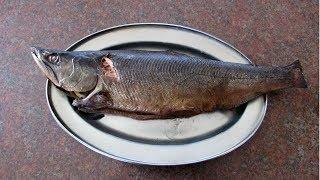 Копченая рыба. УНИВЕРСАЛЬНЫЙ рецепт горячего копчения в коптильне / Мужские закуски