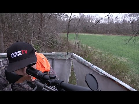 Deer/Coyote Hunting North Carolina | Chapter 4.2 -