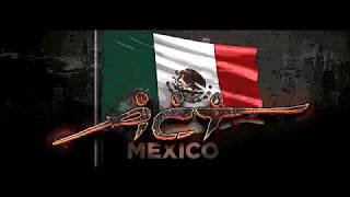 Armed Combat and Tactics-Mexico. Knife fighting , clinch , kicks, disarm.