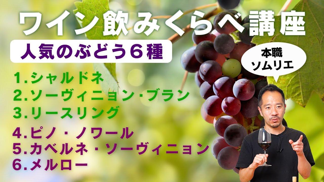 【生で大試飲会】ど定番のぶどう6種のワイン飲み比べ。あなたはどれが好き?【 ソムリエ 】