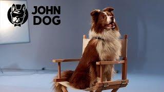 Pies by się uśmiał - komedia dla psów by John Dog