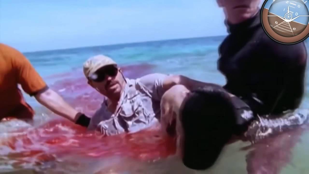Download 10 Horrific Animals Attacks Caught On Camera / Sharks / Bears / Crocodile  / Anaconda / Dogs