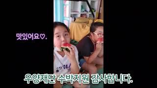우양재단 신선과일지원사업 씨없는 수박 폭염극복 후기 【…