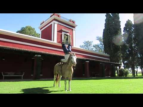 Traveling The Pampas and Our Stay at La Bamba de Areco