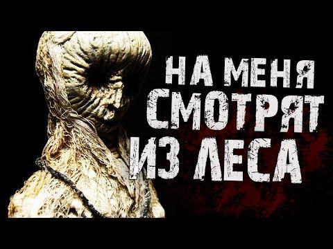 Страшные истории на ночь - На меня смотрят из леса!!!