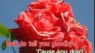 Barbra Streisand & Neil Diamond - You Don't Bring Me Flowers (Karaoke)