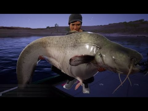 Fishing Sim World - Lago Del Mundo, Awesome Lake!!! - YouTube