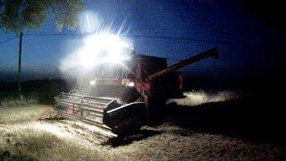 Żniwa 2015 | nocne koszenie BIZON Super Z056