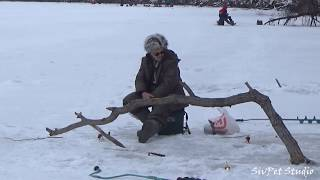 Старый Дон .  Зимняя рыбалка в феврале 2020.