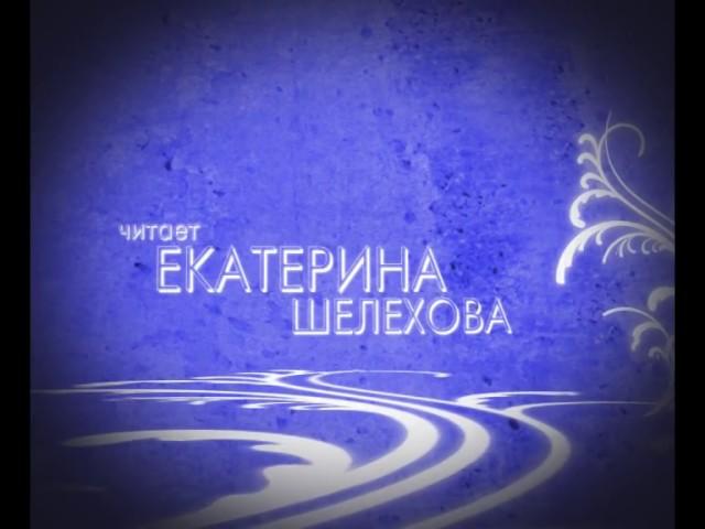 Изображение предпросмотра прочтения – ЕкатеринаШелехова читает произведение «Хвала Человеку» В.Я.Брюсова