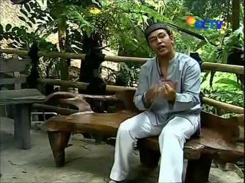 Uje -  Makna Syair Sepohon Kayu