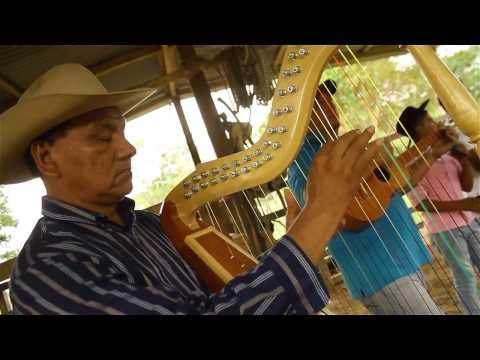 Arauca – Cocoa through the Arauca river