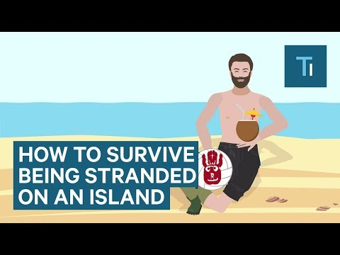 How To Survive If You Get Stranded On An Island