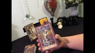 ~Virgo~Beautiful New Beginning~Virgo February Tarot Reading