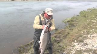 Рыбалка на Камчатке Ловля чавычи Июнь 2013(, 2013-07-27T19:00:34.000Z)