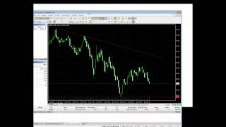 Forex backtest 99
