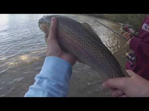 Cape Cod Trout Fishing