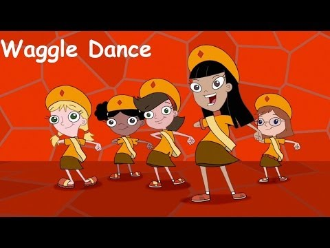 Phineas and Ferb - Waggle Dance Lyrics