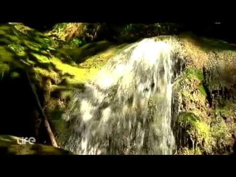 Singlewandern in Wien / Myrafälle mit Guide Anton in ATV Life ausgestrahlt am 30.09.2011 um 19h45