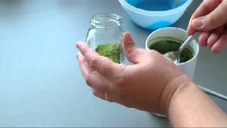 Stevia- How To Sweeten Tea With Home Grown Raw Stevia