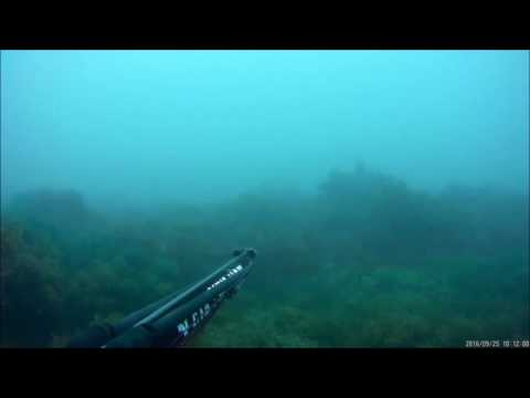 gitup git2 underwater test spearfishing in valencia