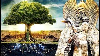 El Árbol de la Vida y el Destino de la Humanidad 2019