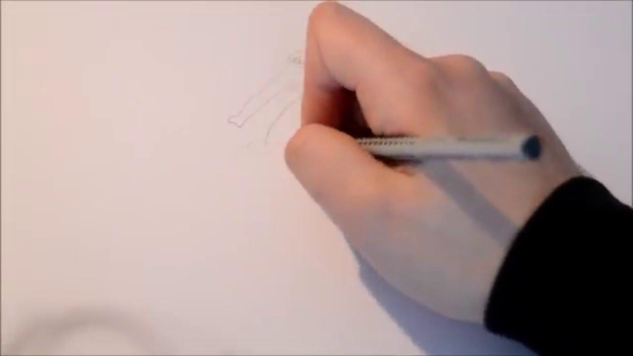 zeichnen ottifanten   YouTube