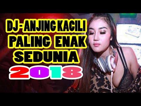 DJ ANJING KACILI PALING ENAK DISCO REMIX SEDUNIA 2018