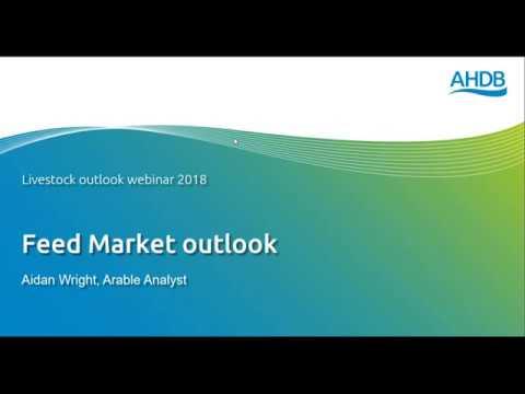 Livestock Outlook Webinar – Feed Outlook – Aiden Wright