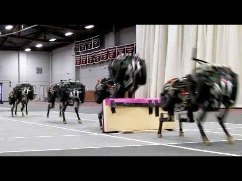 MIT's jumping robot cheetah will keep you awake at night
