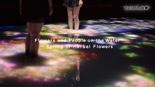 Flowers and People on the Water - Spring of Herbal Flowers beta ver.