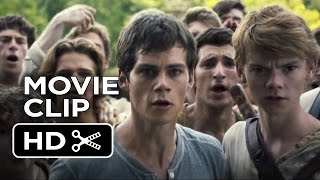 The Maze Runner Movie CLIP - Good Job (2014) - Dylan O