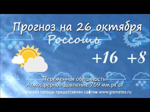 Прогноз погоды на 26.10.2019, Блокнот Россоши
