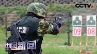 [中国新闻] 中国武警:综合战术演练 提升特战能力   CCTV中文国际