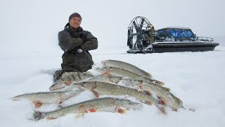 THESE PIKE were CRAZY rabid biting North records and wild places