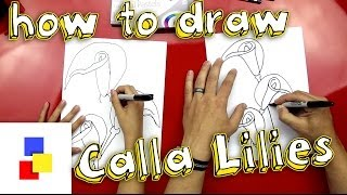 How To Draw Calla Lilies
