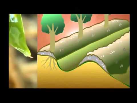 Agri Gel (Super Absorbent Polymer)