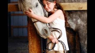 horse video tim mcgraw- my little girl