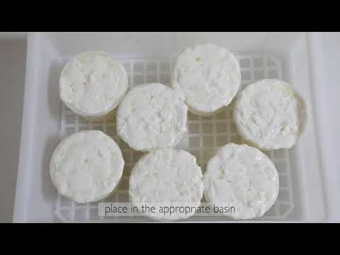 How To Make Homemade Cheese With Kit