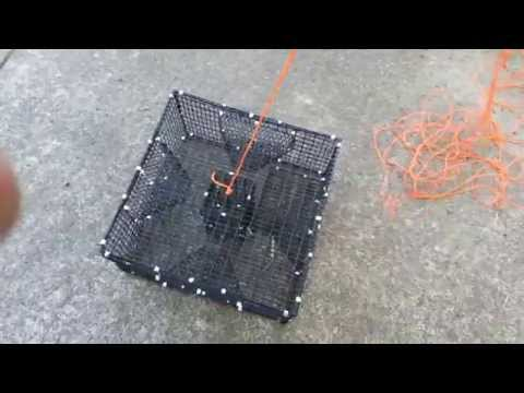 Prepare a shrimp/prawn trap for salt water fishing