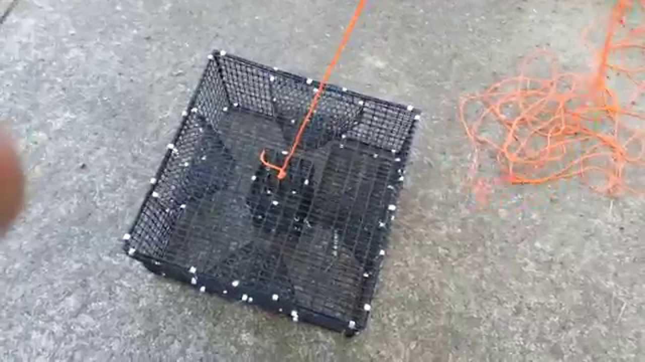 Prepare a shrimp/prawn trap for salt water fishing