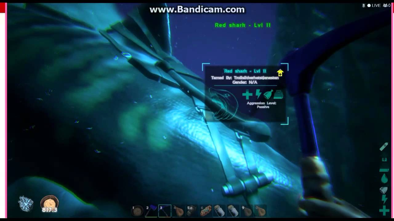 Inside Underwater Caves