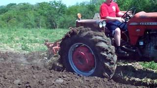 Massey Ferguson 175 Plowing