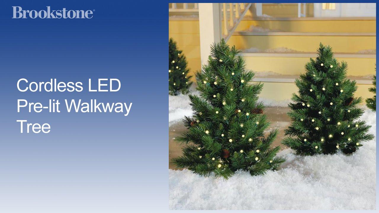 Cordless LED Pre-lit Walkway Tree - YouTube