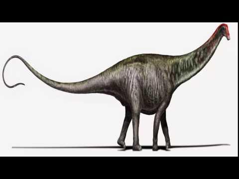 Top 5  dinosaurios mas grandes de la historia