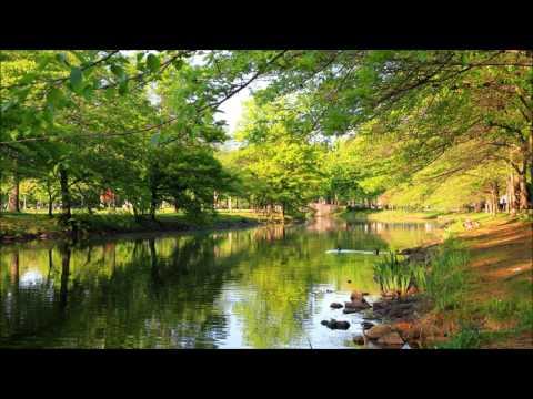 Illenium Feat. Joni Fatora - Fortress (Seven Lions Roots Mix)