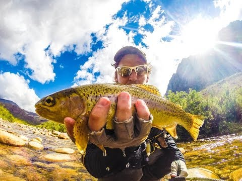Fly Fishing The Cape Streams(Gangster Fly Fishing) - FlyBru