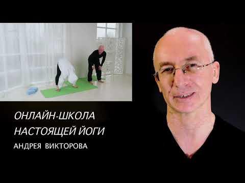 Андрей Викторов