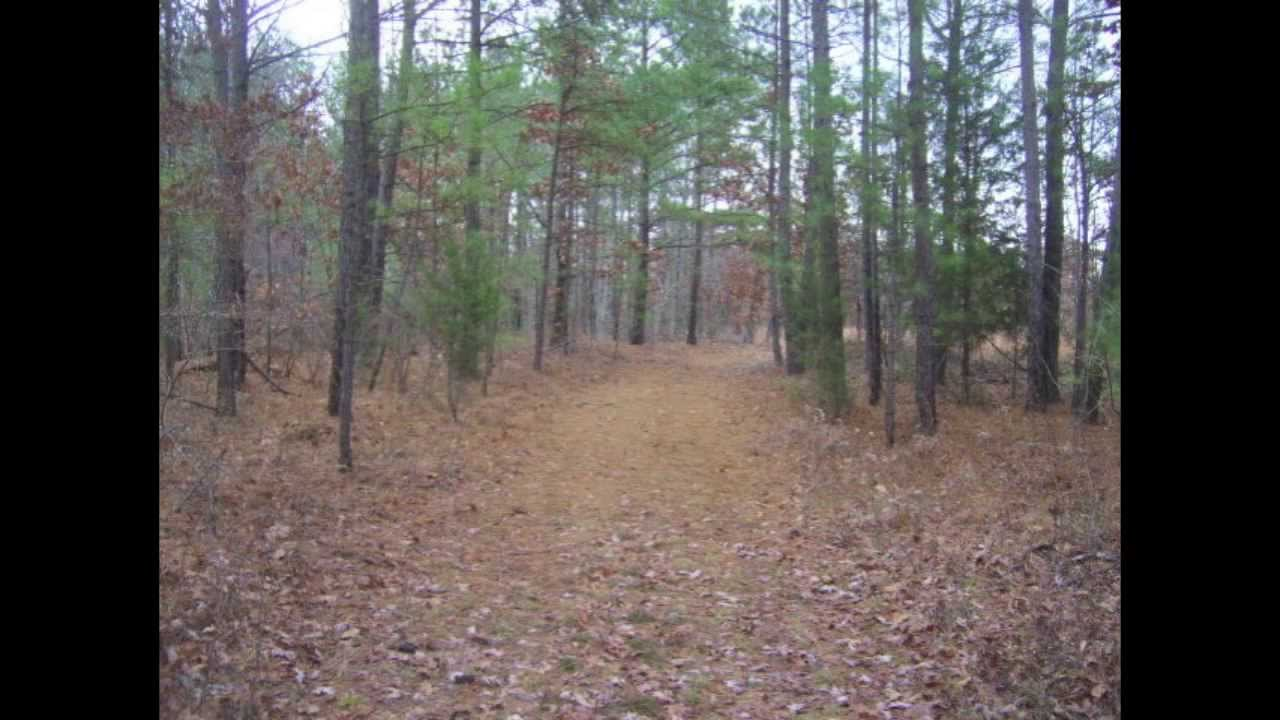 Homesteading land for sale in tennessee with owner for Lenders for land purchase